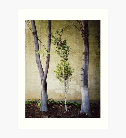 Tree-O! Art Print