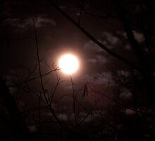 Full Moon on Vernal Equinox by thelarsons
