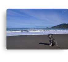 Fritzel at the beach Canvas Print