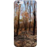 Blackened trees and bushland after bushfire iPhone Case/Skin