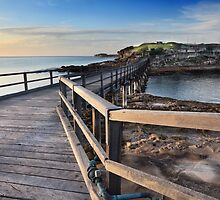 Sunrise over Bare Island, La Perouse Australia by Leah-Anne Thompson