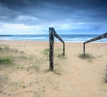 Old timber log and wire path to beach by Leah-Anne Thompson