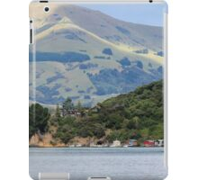 Robinson's Bay iPad Case/Skin