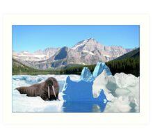 791-Still Icy Art Print