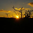 Broken Hill Sunset  by fcory