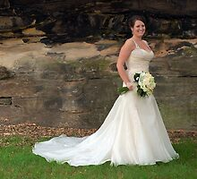 Its all about the Dress by Sarah Moore
