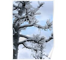 Freezing Tree Poster