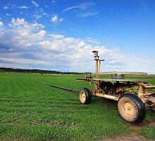 Turf Farm Freemans Reach Australia landscape by Leah-Anne Thompson