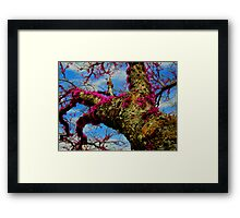 THIS IS FANTACY! Framed Print