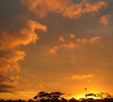 Tangerine Skies by McMitus
