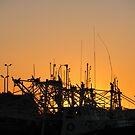 Sunset by Cat  Davison