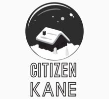 Citizen Kane by burro II by burrotees