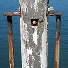 Jetty Post by MrsO