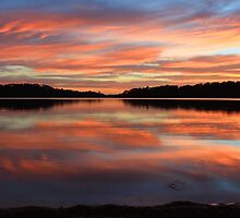 Red Sunrise Reflections at Narrabeen, Australia seascape landscape by Leah-Anne Thompson