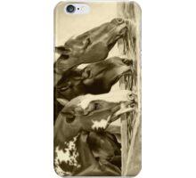 Drink'n Buddies iPhone Case/Skin