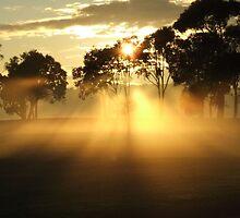 Sunrise ghosts by SDJ1