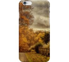 And The Seasons They Go Round and Round iPhone Case/Skin