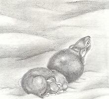 lil bunnies.. by frozenfa