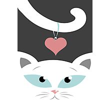cat in love Photographic Print