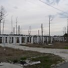 Hurricane Katrina Damage In Mississippi #1 by kevint