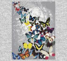 Butterflies by Artway