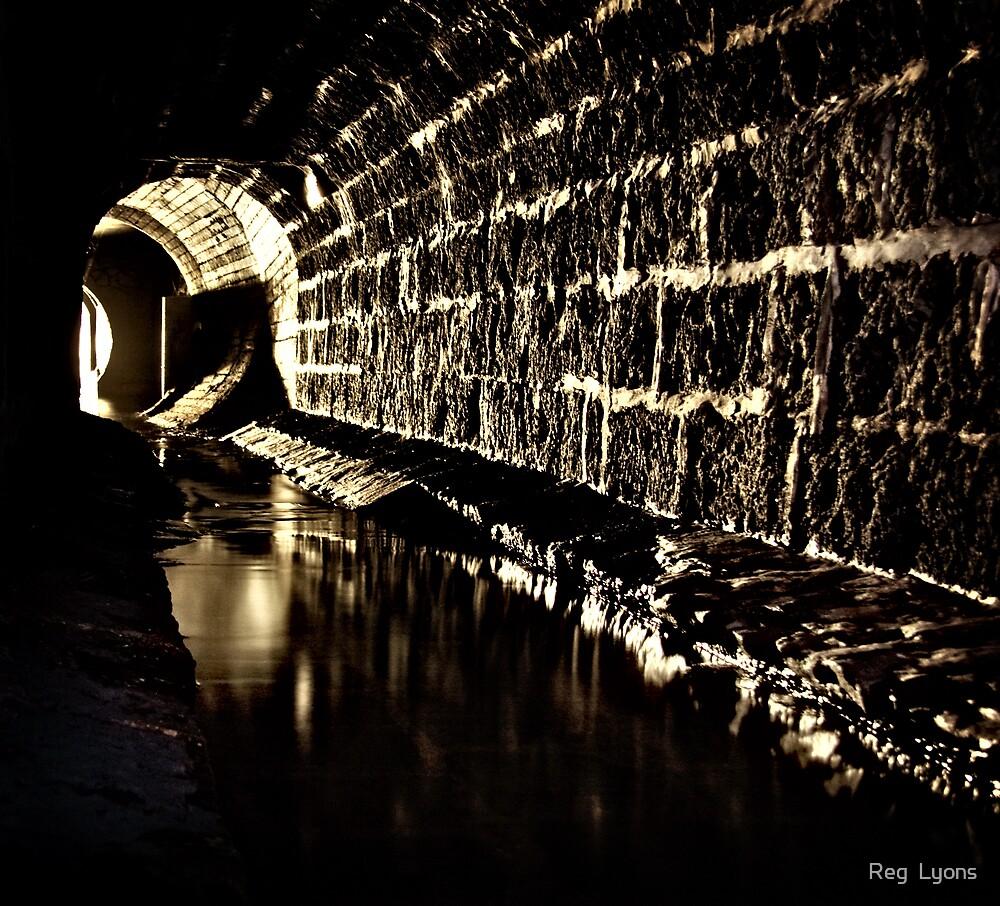Subterranean Geelong by Reg  Lyons
