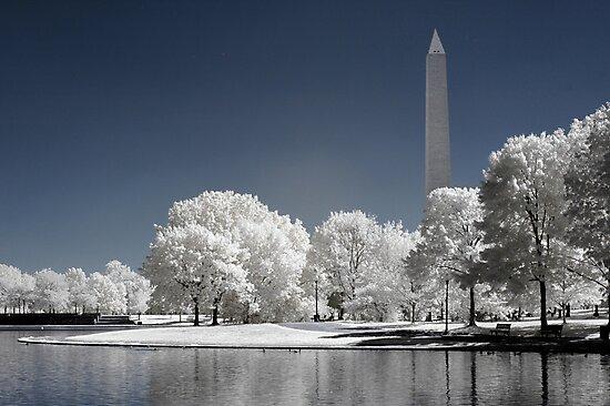 Washington Monument (Infrared) by Vicky Hamilton