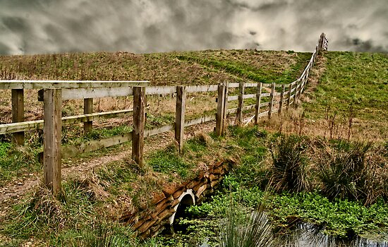 Don't Fence Me In by Ian Foss