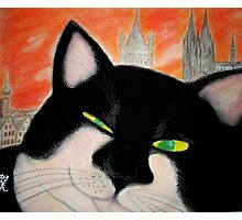 Travelling Cat Winking in Cologne Photographic Print