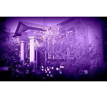 Vera's Hideaway, purple Photographic Print