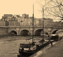 Pont Neuf by Nico3
