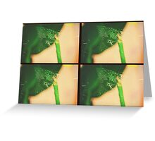 Spider Web Action Grid Greeting Card