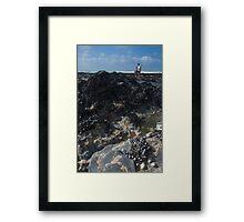 'Rockpool Diving' Framed Print