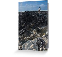 'Rockpool Diving' Greeting Card