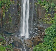 Midway Stop Fitzroy Falls by Warren. A. Williams