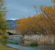 A River  Runs Through It - Ross, Tasmania, Australia by Philip Johnson