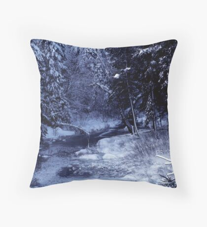 Winter in Algonquin Park Throw Pillow