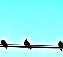 Three Little Birds by Tommy Seibold