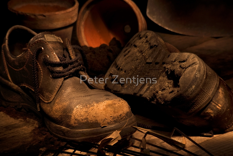 The Gardner's Shed by Peter Zentjens
