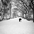 Take A Walk In the Park With Someone You Love by Andrew Moore