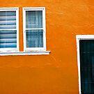Backdoor by Andrew Moore