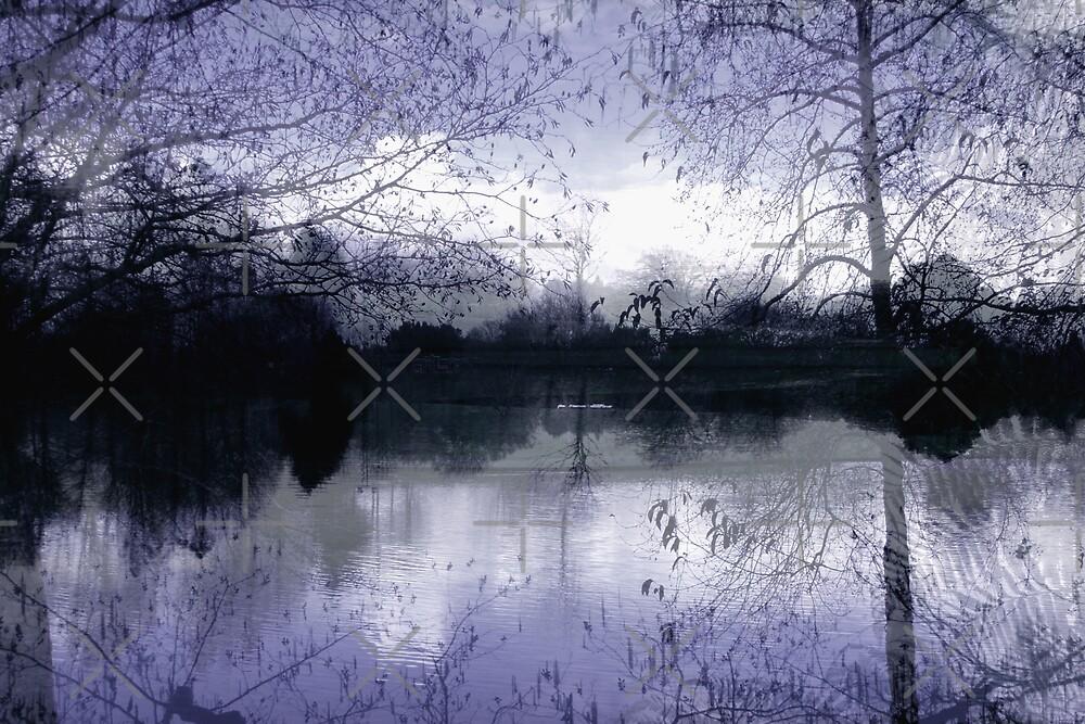 Winter's Silence by Varinia   - Globalphotos