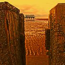 Cleethorpes Pier by Ian Foss