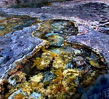 Terquoise Rockpool by Craig Harris