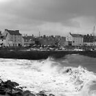 Stonehaven Harbour - Scotland by John Thurgood