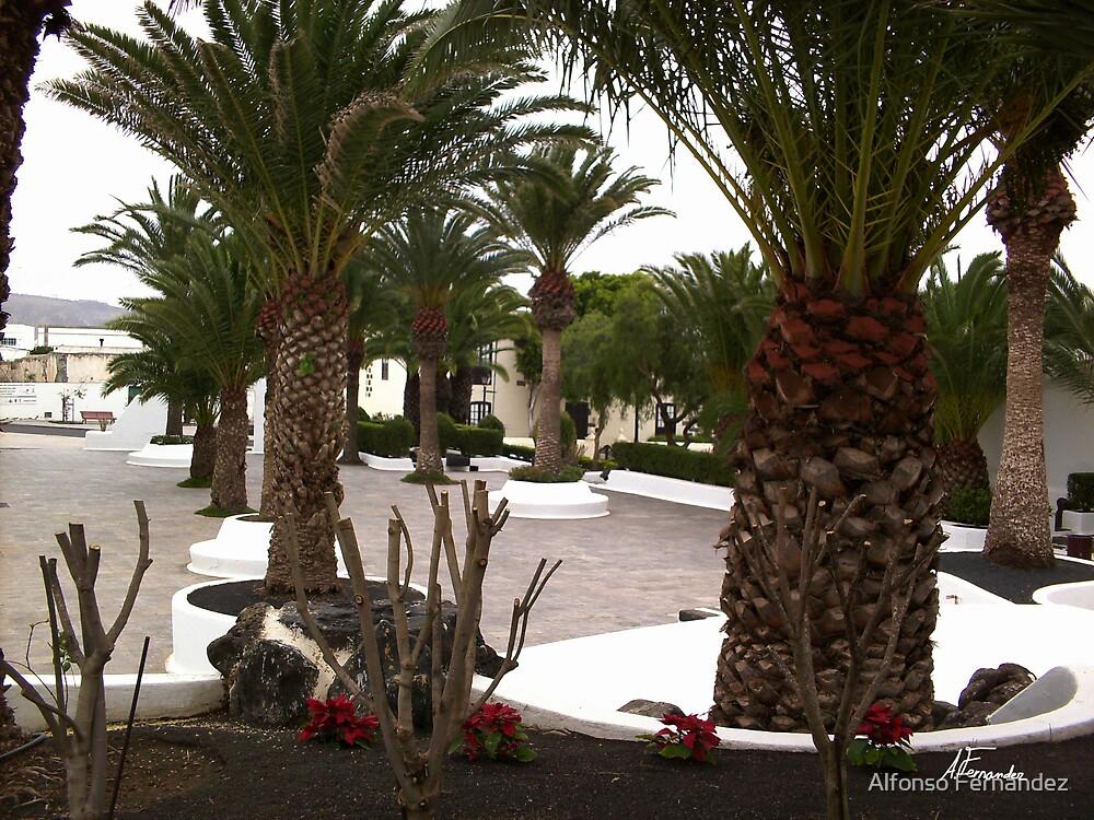 Plaza 4 by Alfonso Fernandez