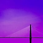 Spanning the Air © by Mary Campbell