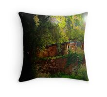 Unexpected View Throw Pillow