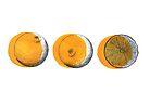 shifty orange  by Chauza