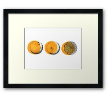 shifty orange  Framed Print